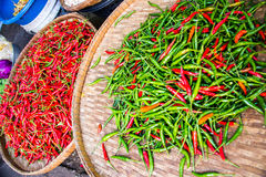 Chili Peppers for sale. Stock Image