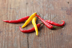 Chili peppers. Shallow DOF Royalty Free Stock Photos