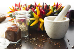 Chili Peppers and spices Stock Photos