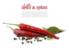 Chili peppers and spices. On the white background stock photos