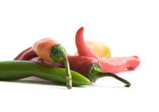 Chili Peppers on White. Colorful chili peppers on white background Stock Image