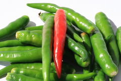 Chili peppers on white, Thailand. Red and green chili peppers on white, Thailand Royalty Free Stock Photos