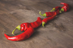 Chili peppers on a  wooden background. Group of red chili peppers on a brown wooden background Stock Photos