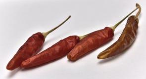 chili pieprz wysuszony gorący fotografia stock