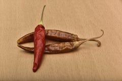 chili pieprz wysuszony gorący obraz stock