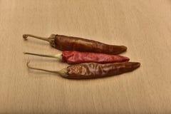 chili pieprz wysuszony gorący zdjęcia royalty free