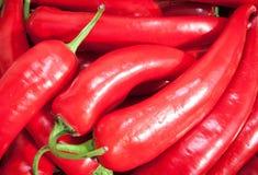 Chili pieprze na stole Zdjęcie Stock
