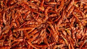 Chili pieprzu tło Zdjęcie Stock