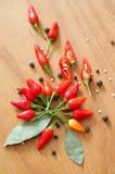 Chili pieprzu wciąż życie Zdjęcie Royalty Free