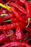 chili pieprzy czerwień Zdjęcie Stock