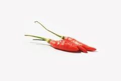 chili pieprzy czerwonego Thailand Zdjęcie Stock