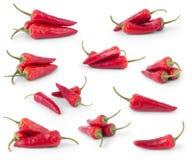 chili pieprzy czerwonego ustalonego biel Obraz Stock