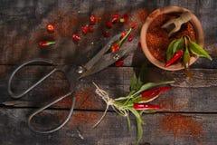Chili Powder Stock Image