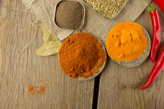 Chili powder, black papper, turmeric, fennel Stock Images