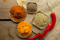 Chili powder, black papper, turmeric, fennel Royalty Free Stock Image