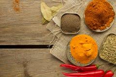 Chili powder, black papper, turmeric, fennel Royalty Free Stock Photos
