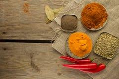 Chili powder, black papper, turmeric, fennel Stock Photography