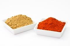 Chili powder and coriander powder Stock Images