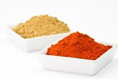 Chili powder and coriander powder Stock Image