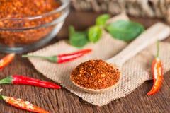 Chili proszek w łyżki i czerwonego chili pieprzu Obraz Royalty Free