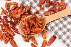 chili röda torkade varma peppar arkivbild