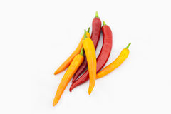 Chili. Red chill and yellow chili Royalty Free Stock Photography