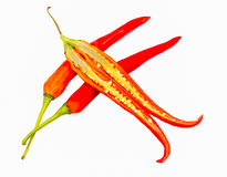 The chili red color. Royalty Free Stock Photography