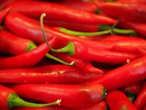 Chili, Red, Sharp, Spice Royalty Free Stock Photo