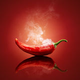 Chili red steaming hot. Hot chili red smoking or steaming with reflection royalty free stock photo