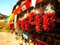 Chili Ristras in de Herfst Stock Afbeelding