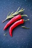Chili rosemary Stock Image