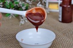 Chili-Sauce in den Tellergewürzen Lizenzfreies Stockfoto