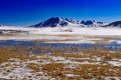 Chili, snöberg och salta sjöar royaltyfri foto