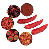 Chili Spice Selection Stock Image