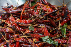 Chili spice spicy red dry cooked ingredients preparation concept Stock Photos