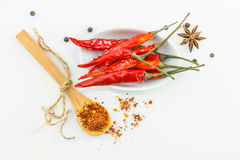 Chili spices top view on white background. Stock Images