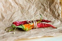chili suszący pieprz Zdjęcia Royalty Free