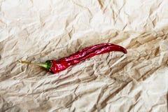chili suszący pieprz Obraz Royalty Free