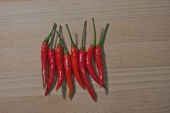 A Thai chili, It`s Hot, Spicy but is good for health and keep food more delicious. Chili from Thailand, It`s main ingredient for spicy Thai food, it make the Stock Images