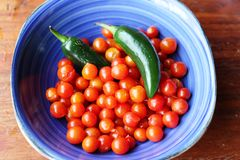 Chili and tomatoes for making Mexican sauce Royalty Free Stock Image