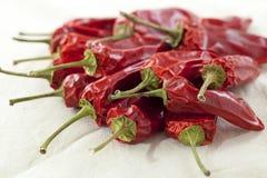chili torkade peppar Arkivbilder