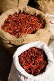 chili torkade peppar Arkivbild