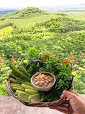 Chili upad z warzywami w koszu obraz royalty free