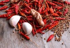 Chili vitlök, krydda som förläggas på trägolvet royaltyfria foton