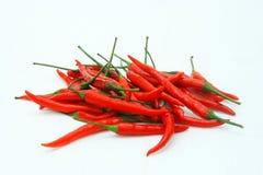 Chili. On white background Stock Image