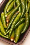chili zielenieje gorącego Obrazy Royalty Free
