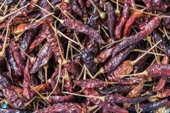 Chilibakgrund Arkivfoto
