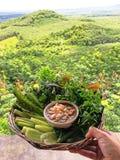 Chilidopp med grönsaker i en korg royaltyfri bild