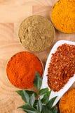 chilien flagar den kryddiga skeden för ingredienser Arkivfoto