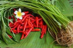 Chilien och grönsakerna Arkivbilder